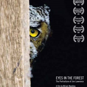 Eyes in the Forest: The Portraiture of Jim Lawrence - Short Documentary