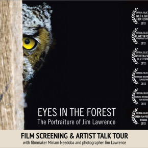 Eyes in the Forest regional tour